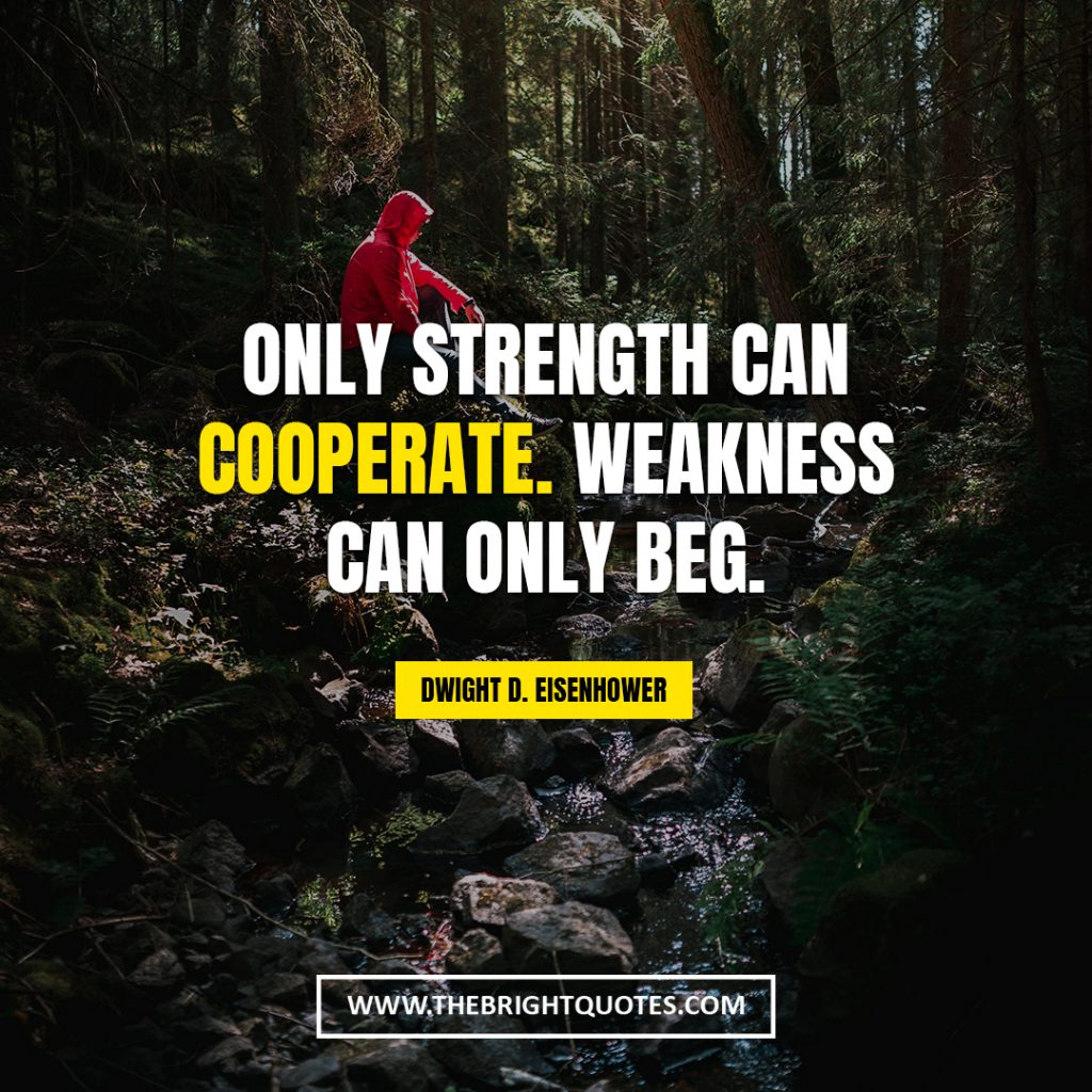 quotes about resillience Only strength can cooperate Weakness can only beg