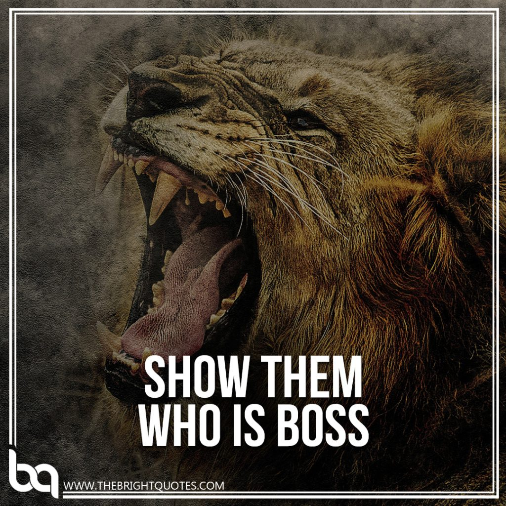 success is show them who is boss