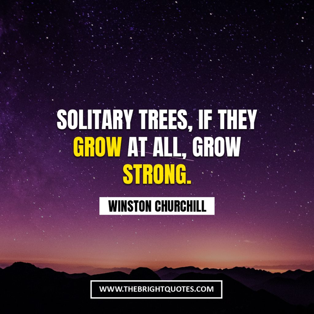 Winston Churchill quote about nature