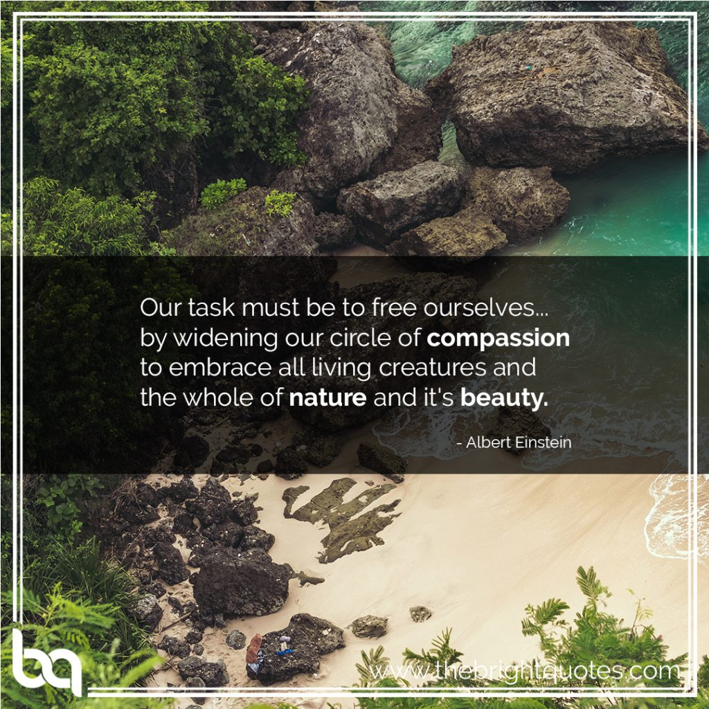 compassion quotes images