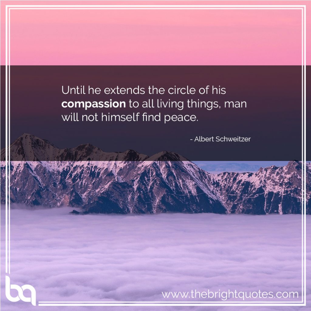 heart warming compassion quotes