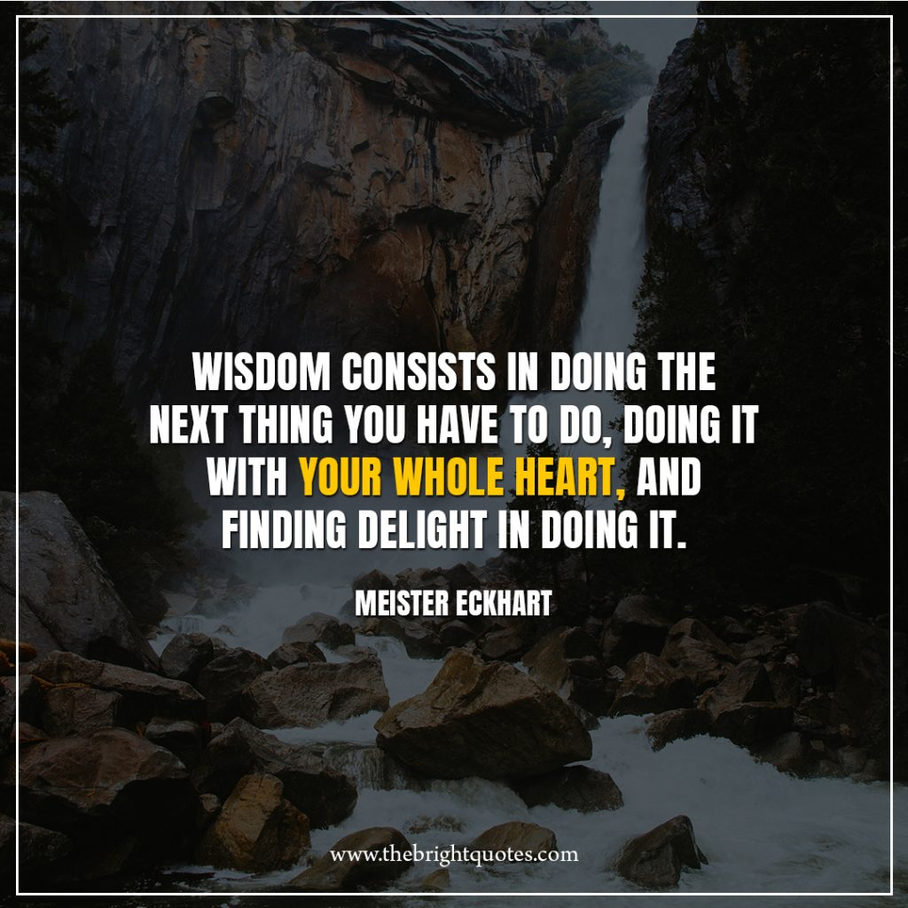 9 quote of the day Wisdom-consists-in-doing-the-next-thing-you-have-to-do