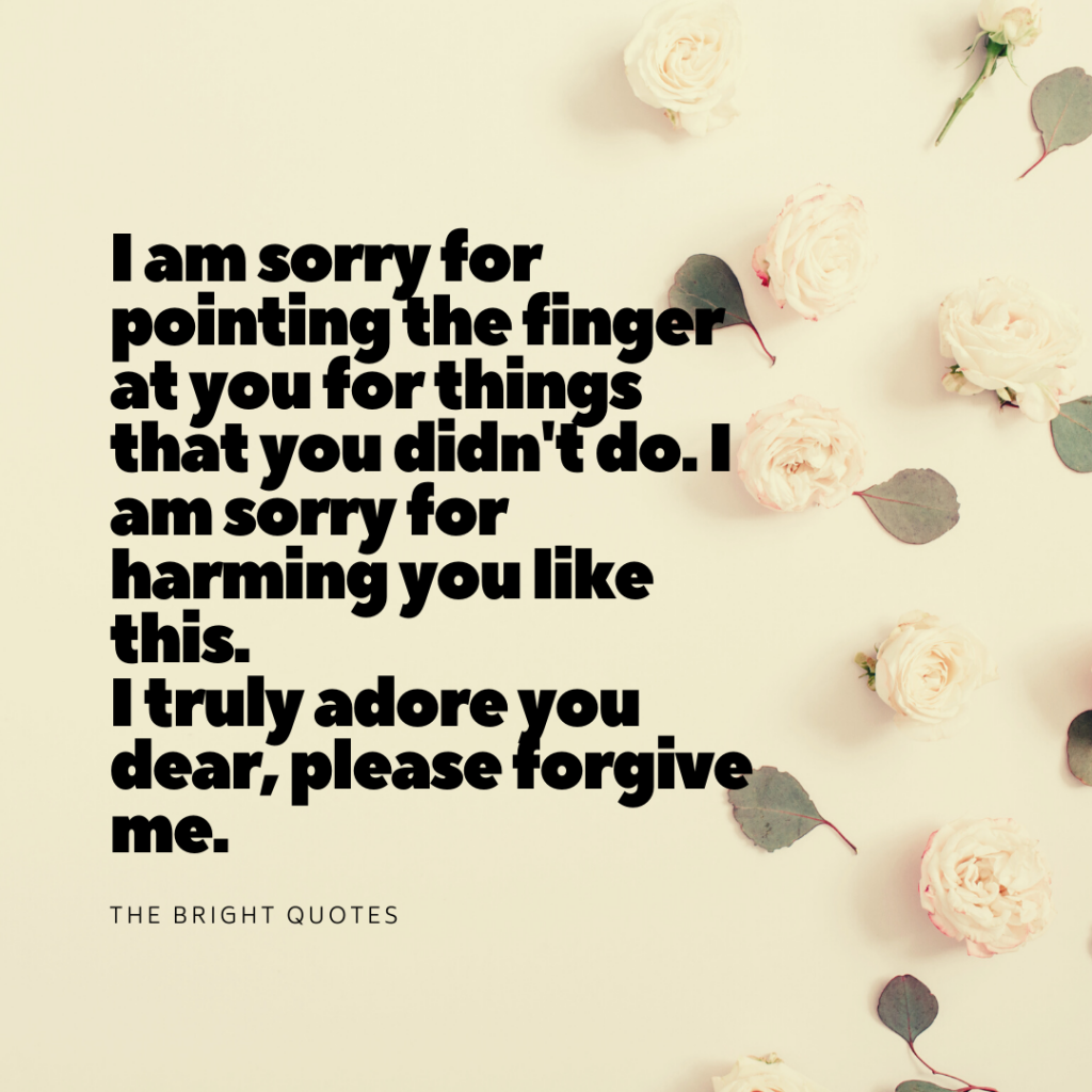 Heart Touching I am Sorry Quotes