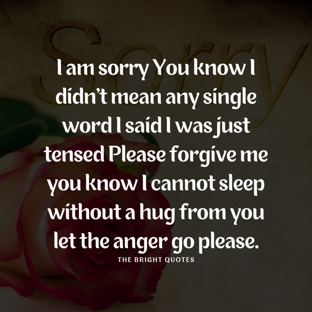 Sorry Quotes for Best Friend