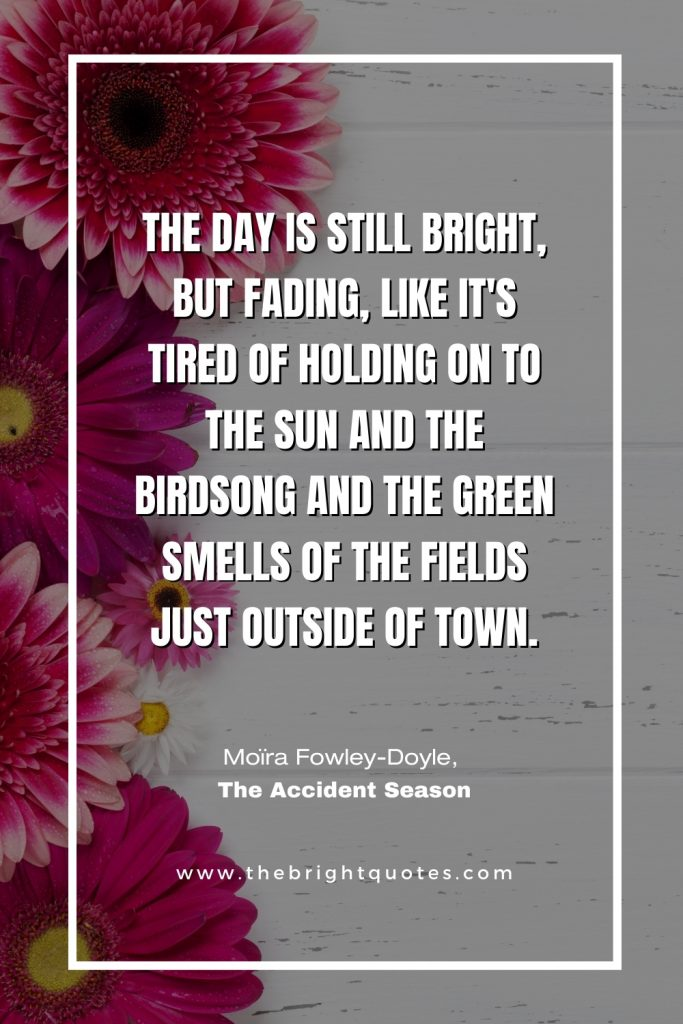 The day is still bright Moïra Fowley-Doyle, The Accident Season