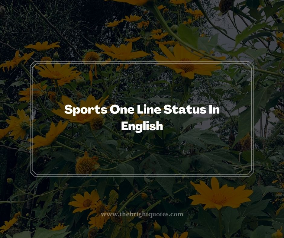 Sports One Line Status In English