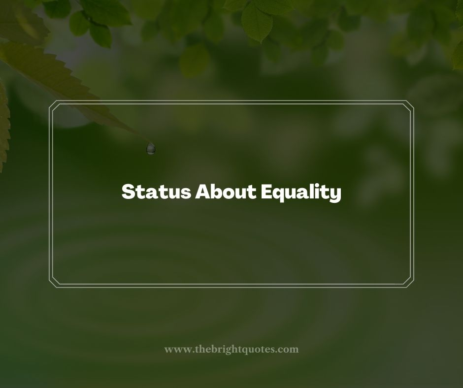 Status About Equality
