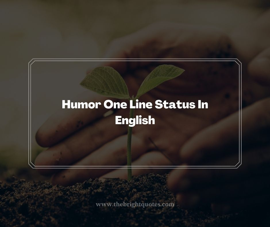 Humor One Line Status In English