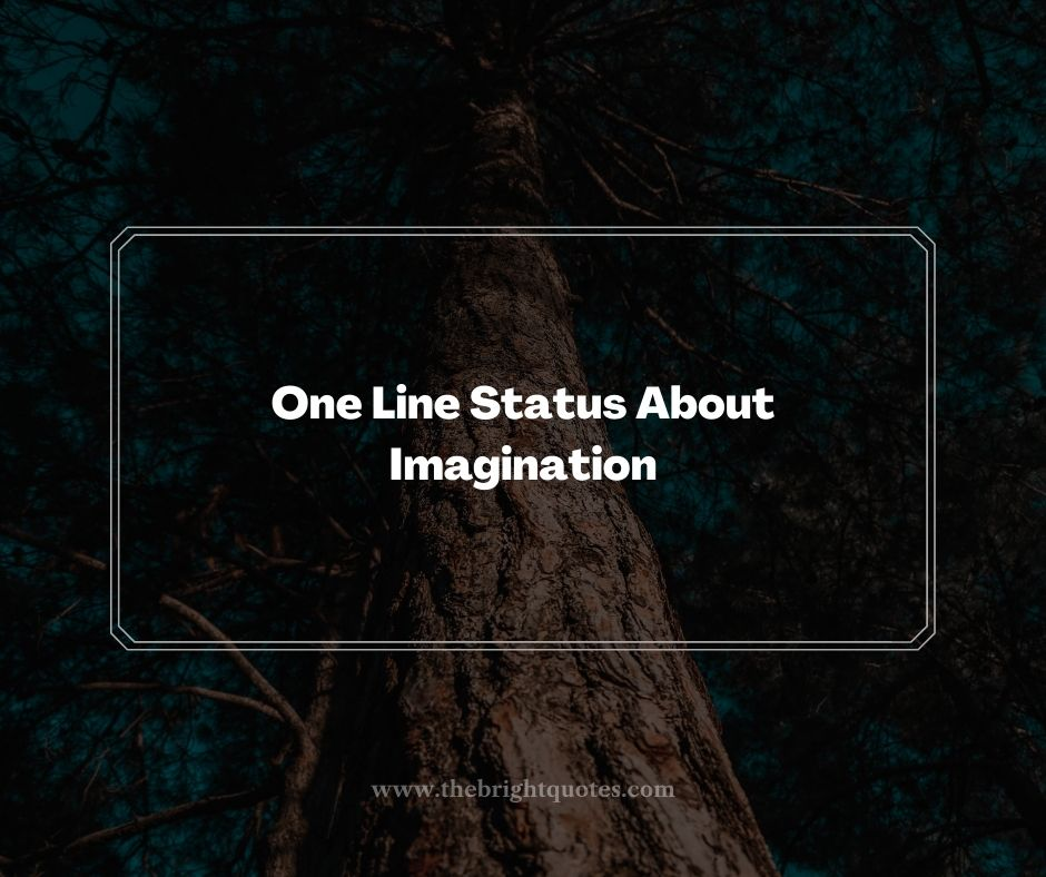 One Line Status About Imagination