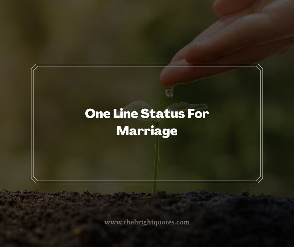 One Line Status For Marriage