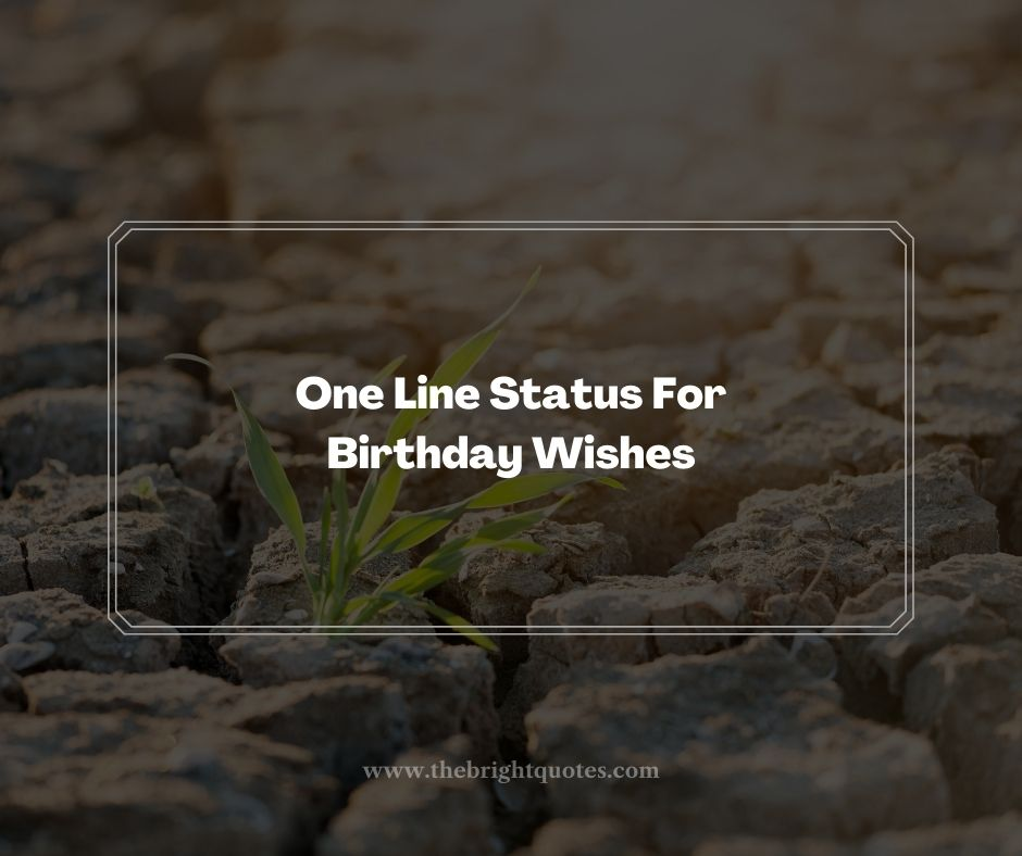 One Line Status For Birthday Wishes