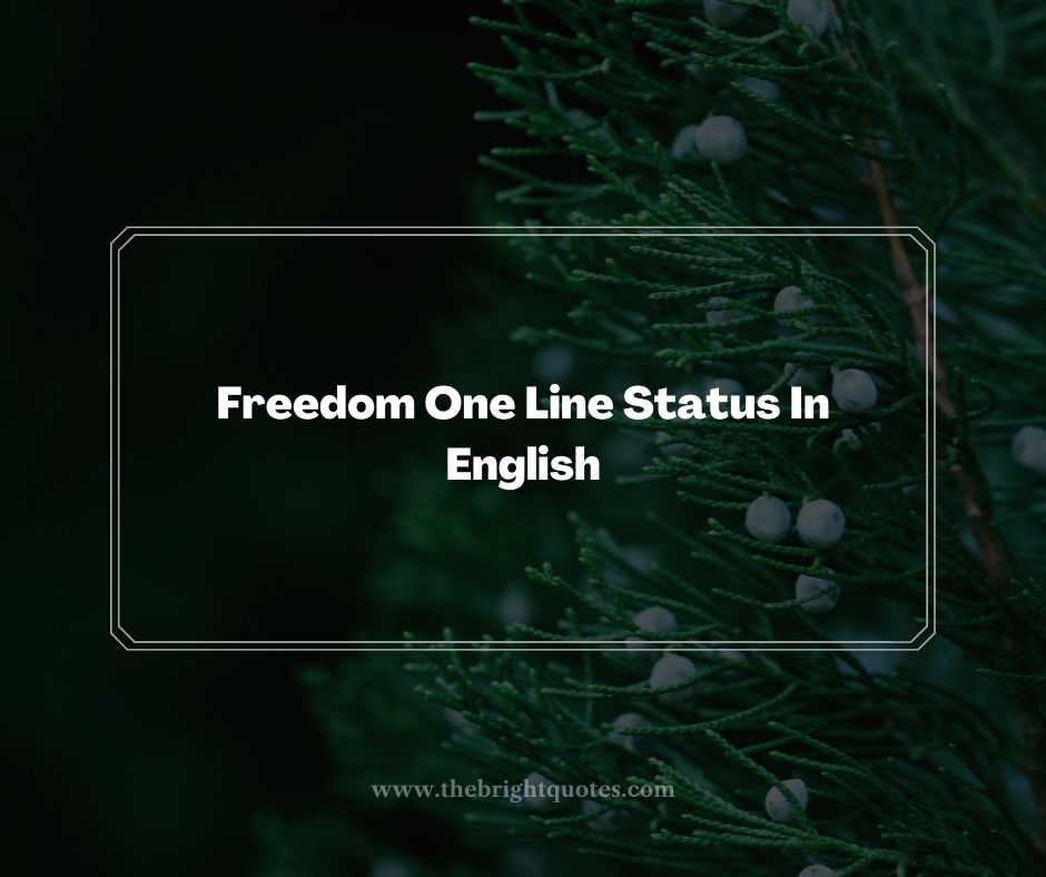Freedom One Line Status In English