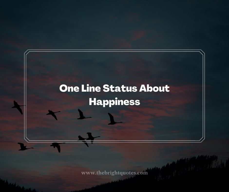 One Line Status About Happiness