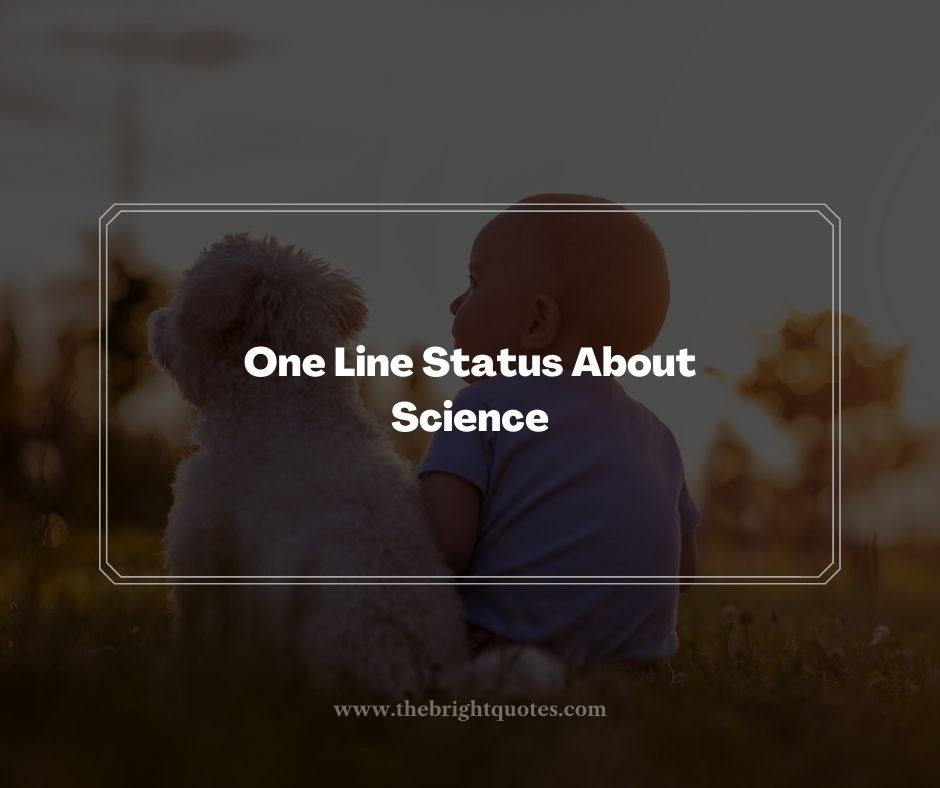 One Line Status About Science