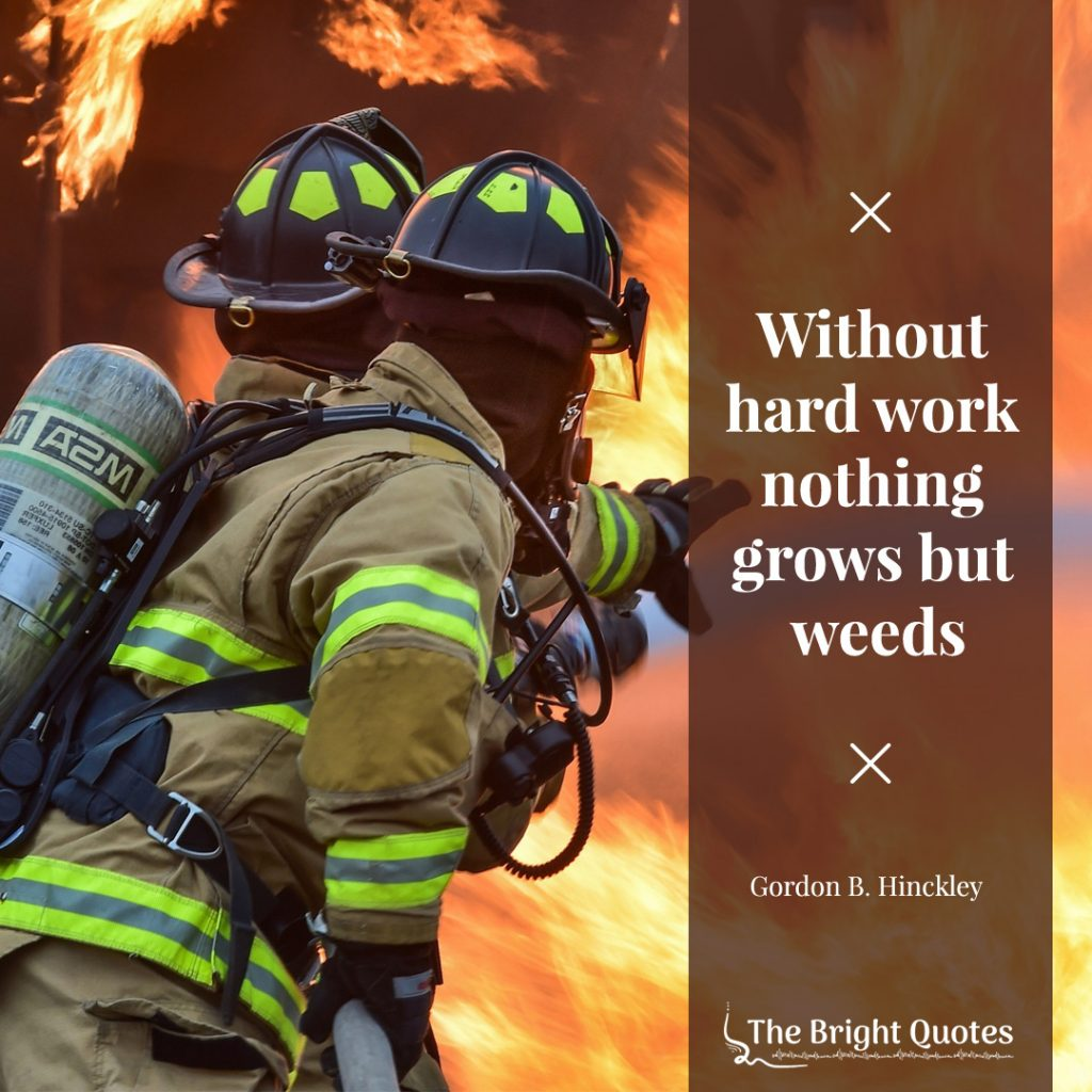 Without hard work nothing grows but weeds. Gordon B. Hinckley