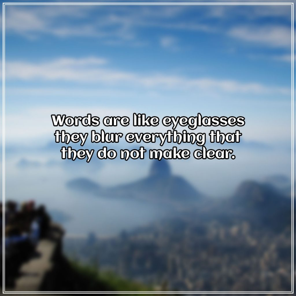 Words are like eyeglasses they blur everything that they do not make clear.
